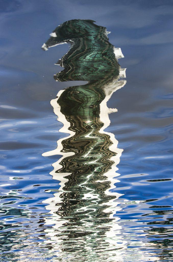 reflection, seahorse, Melbourne